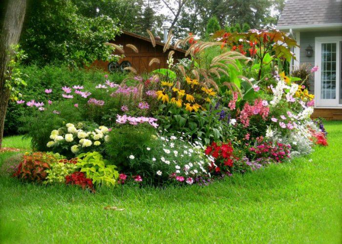 Pour un jardin sain en hiver et au printemps